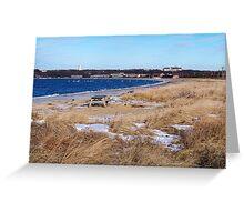 Snowy Montauk Seashore Greeting Card