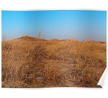 Golden Dunes of Hither Hills Poster