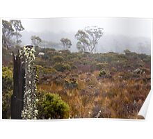 Tasmanian Highlands Poster