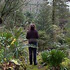 A garden for contemplation... by BronReid