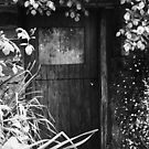 Spring at Cottage Door by Karen E Camilleri