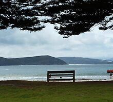 The Empty Bench by Eve Parry