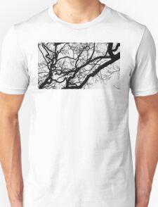 Where's the Paroquet? Unisex T-Shirt