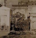New Orleans Cemetary by Barbara Wyeth