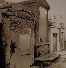 New Orleans Cemetary 2 by Barbara Wyeth