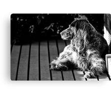 BUFFY THE DOG Canvas Print