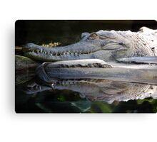 Menacing Crocodile Canvas Print
