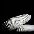 Angel Wings by Erik Anderson