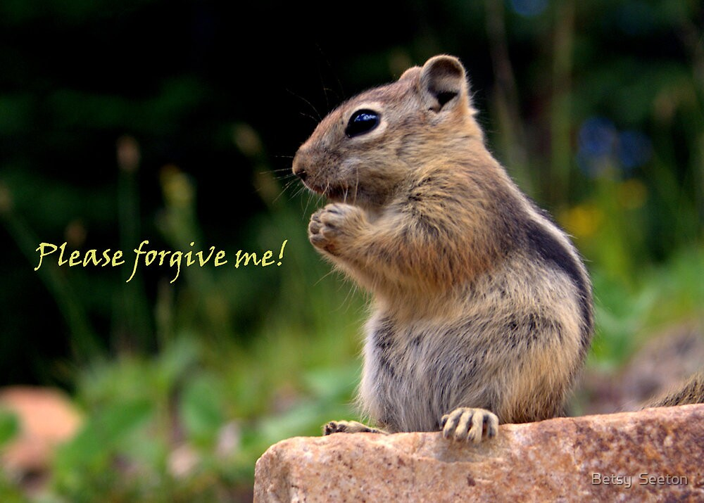 Please Forgive Me by Betsy  Forgive Me