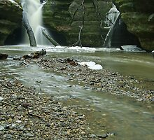 Waterfalls of Starved Rock State Park by Richard Williams