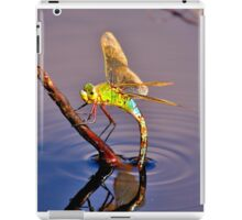 Broad Bodied Chaser  iPad Case/Skin