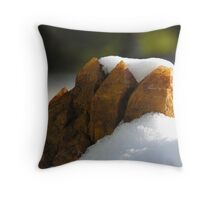 SNOW CRYSTALS Throw Pillow
