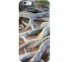 Roots iPhone Case/Skin