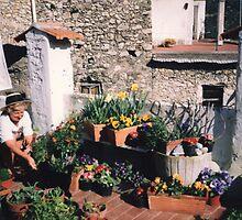 rooftop terrace mini garden, Liguria, Italy by BronReid