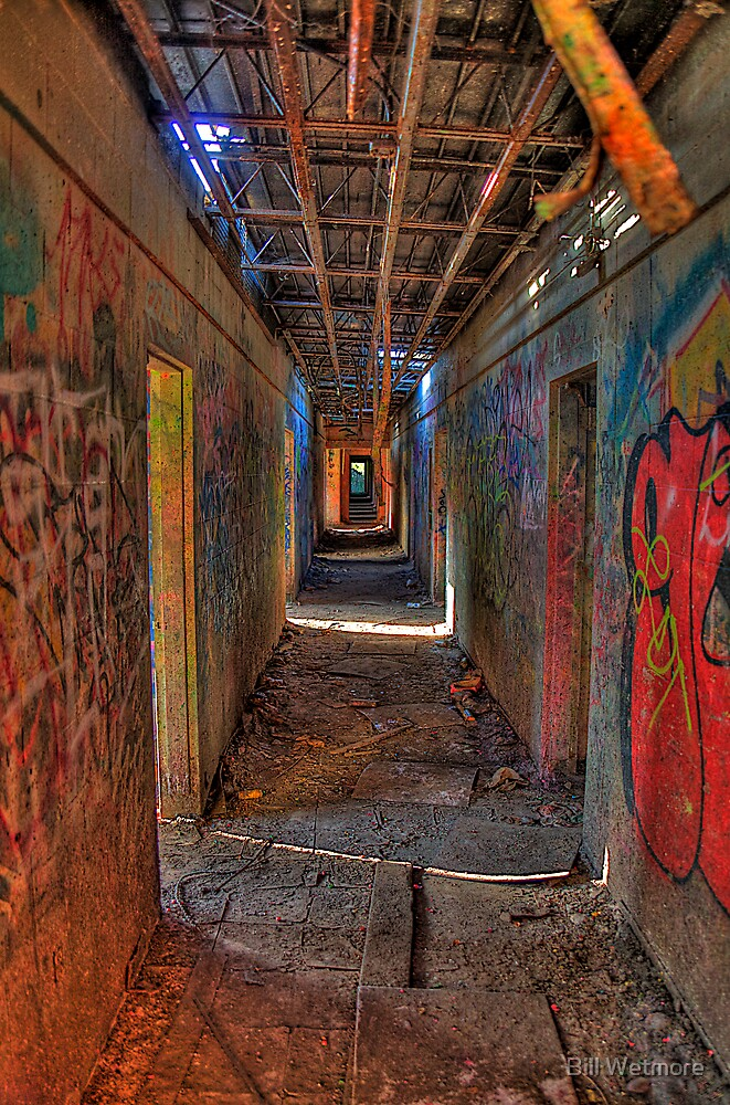 The way out of the Asylum by Bill Wetmore