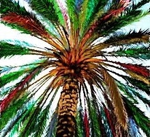 Rainbo Palm by NatureGreeting Cards ©ccwri