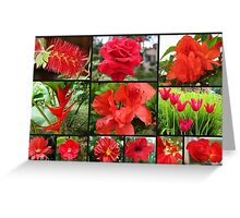 Red flowers collection Greeting Card