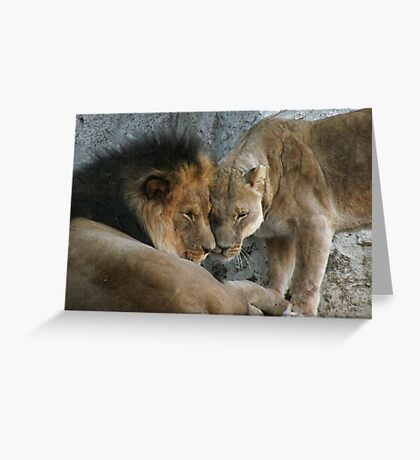 "The ""Mane"" Couple Greeting Card"