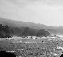 Carmel Highlands on a Foggy Day by nortonlo