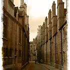 Wandering the lanes of Cambridge by voloro