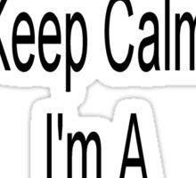 Keep Calm I Am A Bingo Caller Sticker