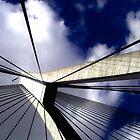 Anzac Bridge, Sydney looking up 1 by ccsad