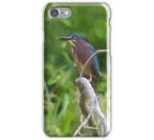 Green Heron iPhone Case/Skin
