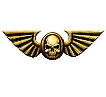 Imperial Skull and Wings Gold Photographic Print