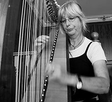 The Harpist by Di Jenkins