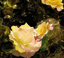Golden Roses by Ivana Redwine