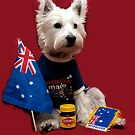 Aussie Bella by Pascal and Isabella Inard