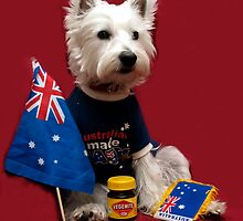 Aussie Bella by Pascal Inard