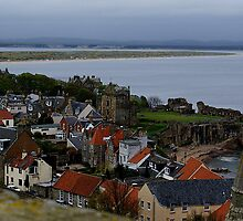 St Andrews view from St Rule's Tower along the coast by BronReid