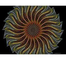 Kaleidoscope Gnarl Photographic Print