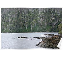 Walpole-Nornalup Inlet Poster