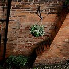 Chester, lovely view of cobbled street from the old walls by BronReid