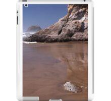 Oregon Coastline iPad Case/Skin