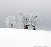 Hoarfrost - Part II by Andreas Stridsberg