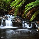 Snobs Creek Falls by Shredman