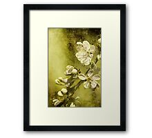 U is for ......Under the plum tree Framed Print