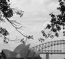 Sydneysiders  by juellie