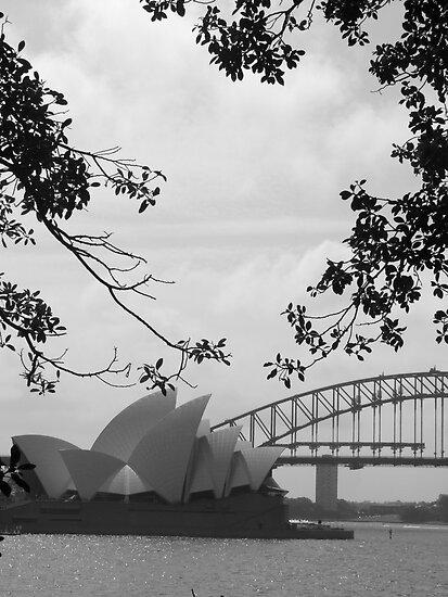 Sydneysiders  by juellie