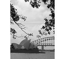 Sydneysiders  Photographic Print