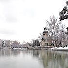 Retiro Park, Madrid by OlurProd