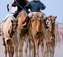 Running camels with a man on Cellphone by Suhail Shah