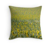 Sunflowers landscape, Castilla la Mancha, Spain Throw Pillow