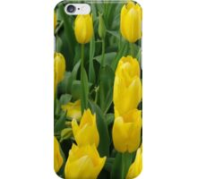 Golden Tulips iPhone Case/Skin