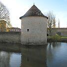 Mill on the Pond by Pamela Jayne Smith