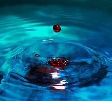 One Red Drop by michellemoore