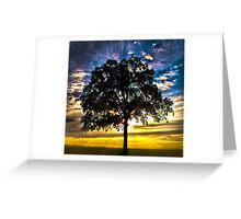Morning Glory - Tree in a beautiful sunset Greeting Card
